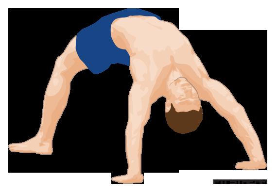 bridge-exercise.png