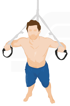 EXERCISES SUSPENSION TRAINING