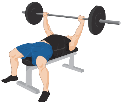 Bench Press Exercise Guide Tips Weight Training Exercises Fitstream