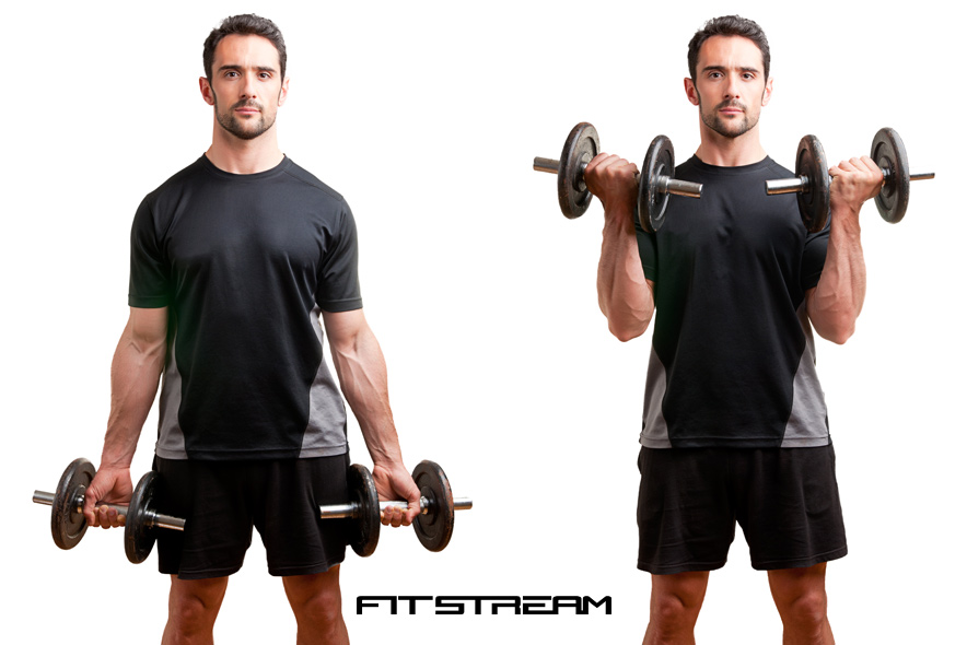 ... Curl Guide, Hints & Tips - Weight Training Exercises - Fitstream
