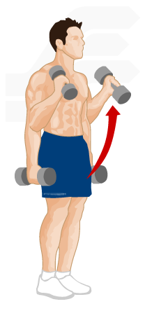 Fitstream: Weight training exercises