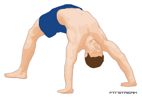 Bridge A6090 on abdominals exercises