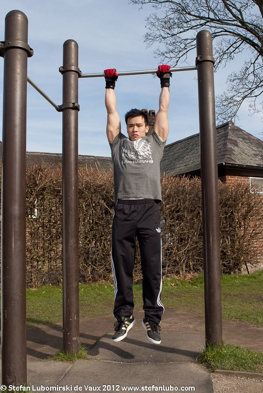 Pull-up Exercise Guide, Progression Exercises, Hints and ...