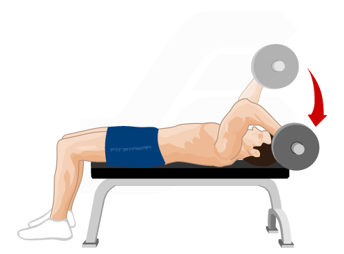 Triceps Extension Training Guide - Weight Training ...