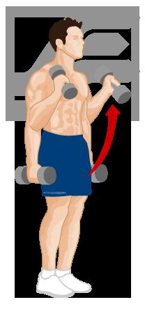 Fitstream: Weight training exercises